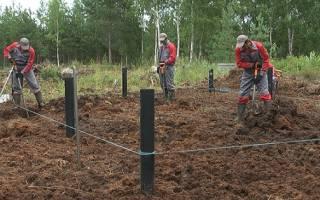 Как сделать фундамент на болотистой почве?