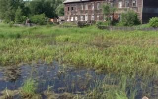 Какой фундамент лучше на болотистой местности?