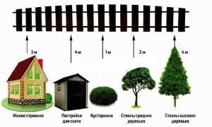 Минимальное расстояние от забора до строения