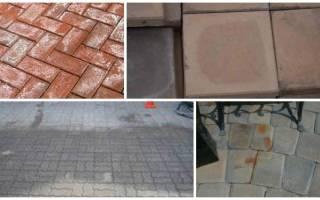 Как очистить тротуарную плитку от цемента?