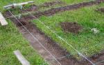 Разбивка фундамента нивелиром